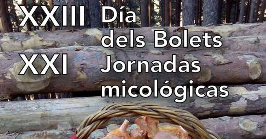 XXIII Dia dels bolets i XXI Jornades micològiques de Beseit