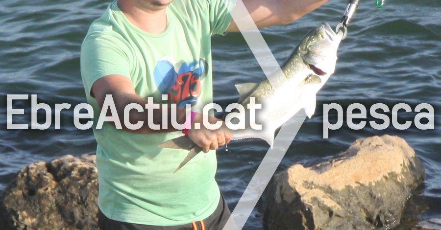 9è Concurs Obert Pesca Fluvial Festes Amposta. 5è Memorial Àngel Conde Calvet