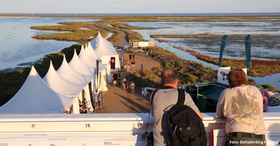 Arriba la 5a edició del Delta Birding Festival, l'únic festival d'ornitologia de Catalunya
