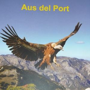 «Aus del Port», de Juan Antonio Muyas Bercet