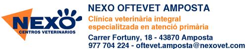 Nexo Oftevet Tortosa, el primer hospital veterinari de les Terres de l´Ebre