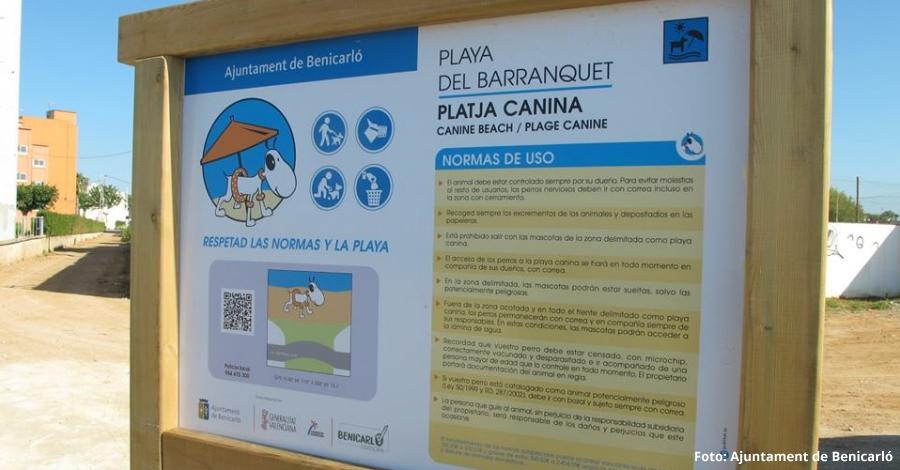 Benicarló habilita dos de les seues platges per a gossos