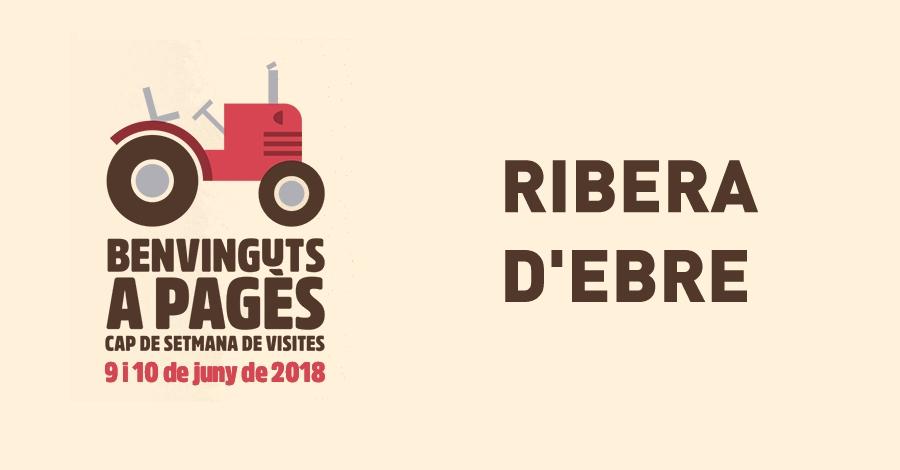 Benvinguts a Pagès - Ribera d'Ebre