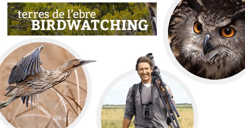 Birdwatching Terres de l'Ebre, agost 2014