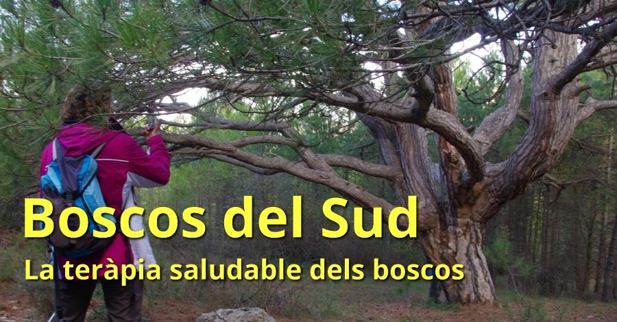 Boscos del Sud (especial Setmana Santa)