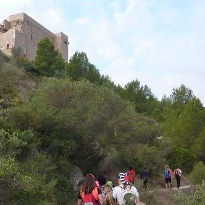 Celebrat el 51è Camí de muntanya de la FEEC a Miravet