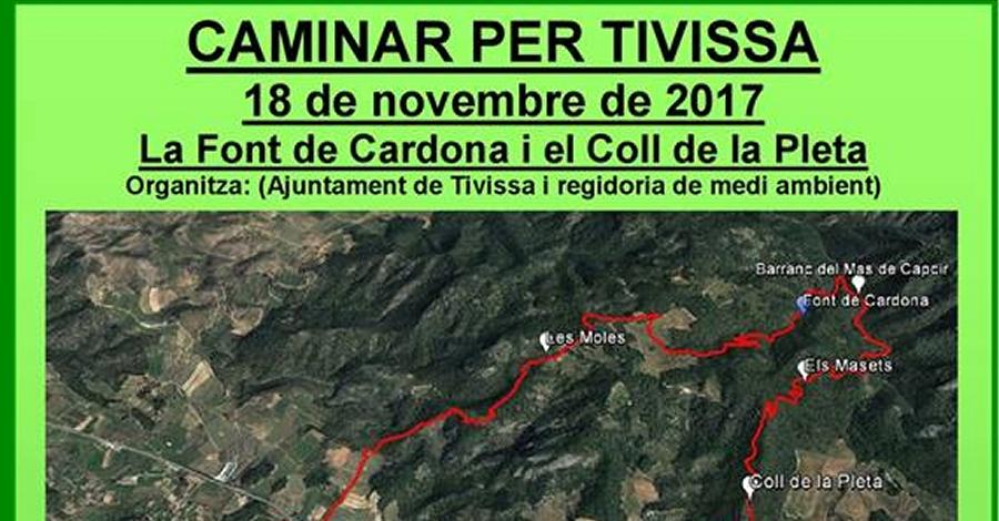 Caminar per Tivissa: La Font de Cardona i el Coll de la Pleta