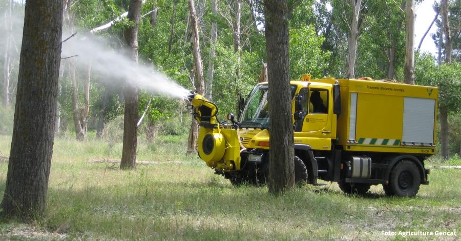 Agricultura inicia la campanya per reduir els incendis als boscos de ribera | EbreActiu.cat, revista digital per a la gent activa