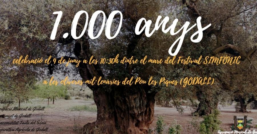Celebració 1.000 anys d'una olivera farga a Godall