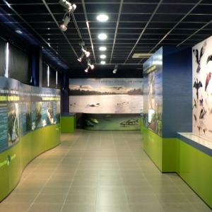 El Centre d'Interpretació del bosc de ribera d'Aldover