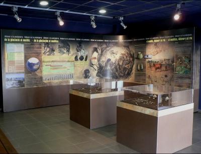 El Centre d'Interpretació del bosc de ribera d'Aldover | EbreActiu.cat, revista digital per a la gent activa