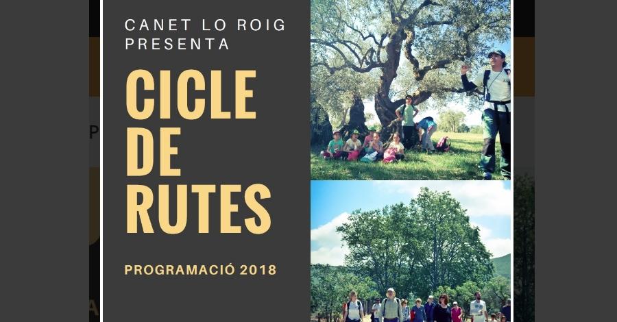 Cicle de rutes Canet Lo Roig: Oliveres mil·lenàries i Fira de l'Oli
