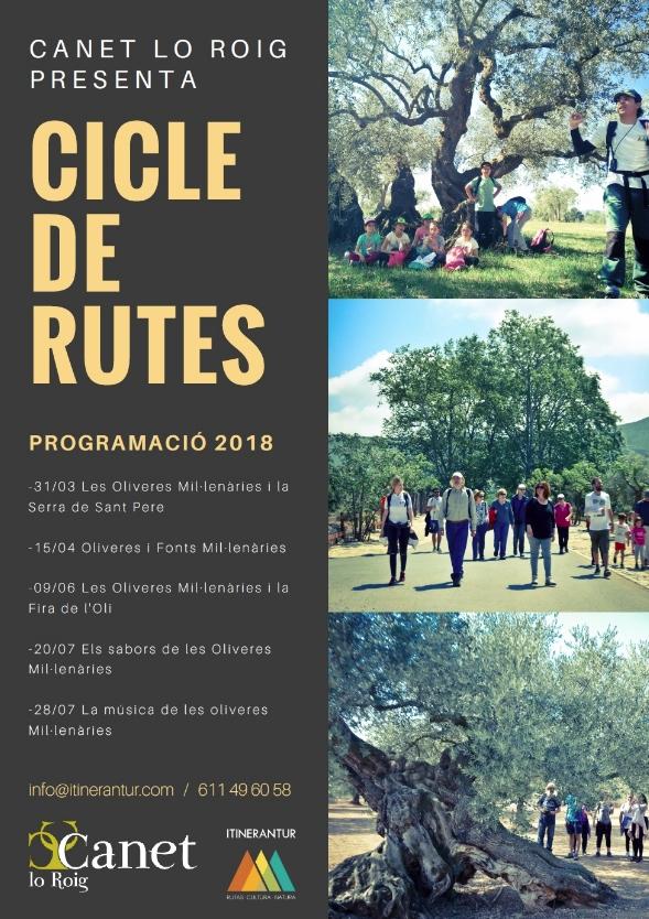Cicle de rutes Canet Lo Roig: Els sabors de les oliveres mil·lenàries