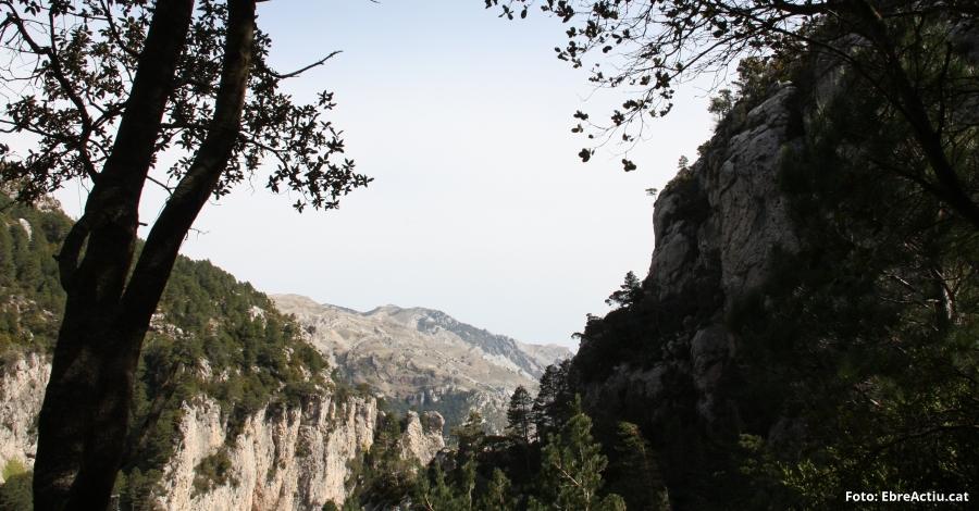 Una cinquantena d'activitats per celebrar el Dia Europeu dels Parcs