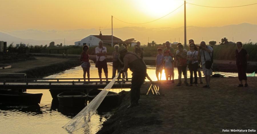 MónNatura Delta posa en marxa una visita per descobrir el Delta quan es pon el sol | EbreActiu.cat, revista digital per a la gent activa