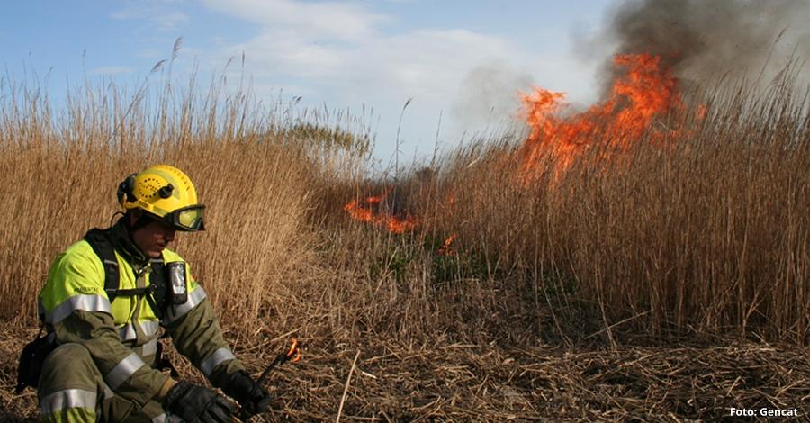 Cremes controlades al Parc Natural del Delta de l'Ebre