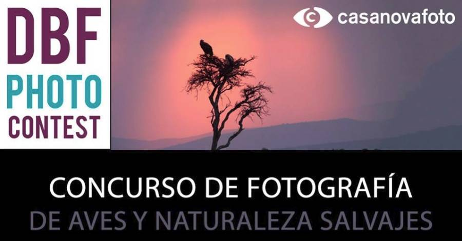 DBF PHOTO CONTEST - Concurs de fotografia