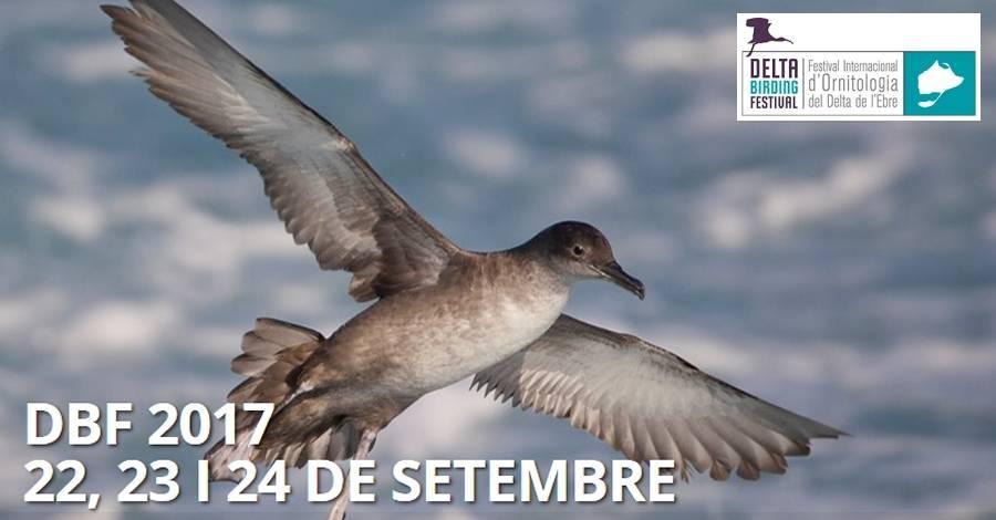 4t Delta Birding Festival