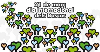 Dia Internacional dels Boscos