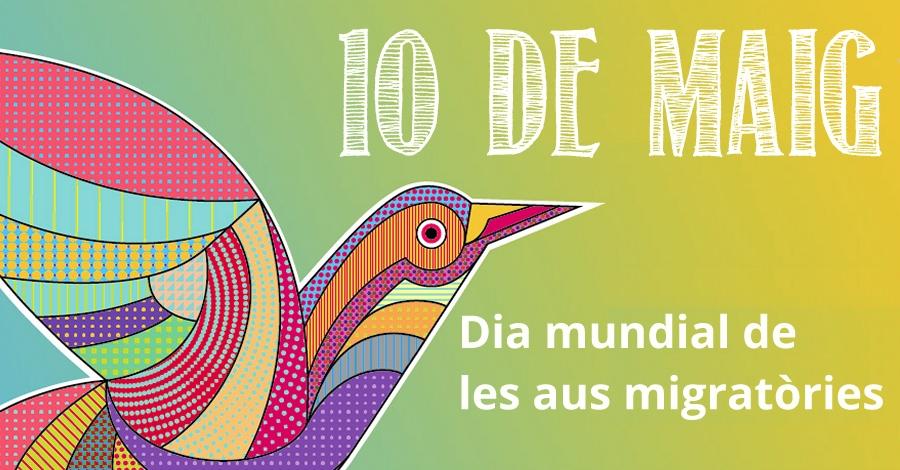 Dia mundial de les aus migratòries