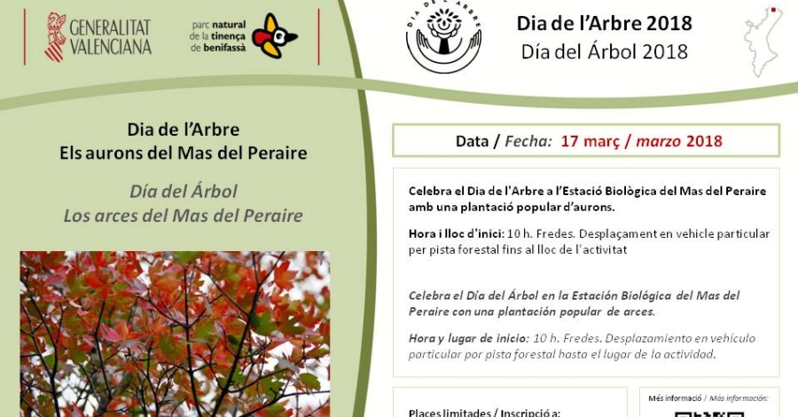 Sortida: Els aurons del Mas del Peraire