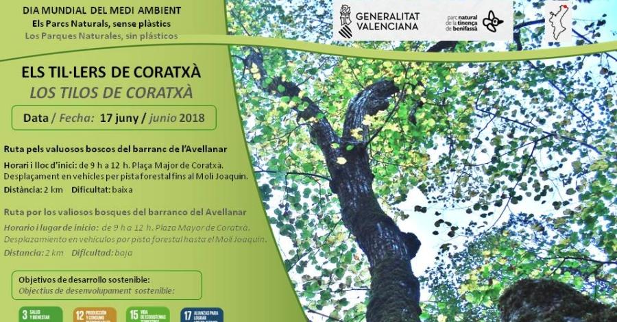 Sortida: Els til·lers de Coratxà