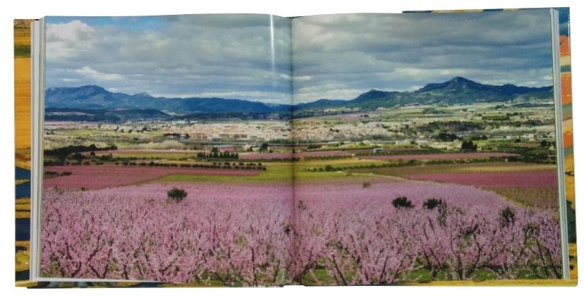 Vicent Pellicer: «Intento de veure els paisatges amb el cor, per poder copsar-ne l'essència» | EbreActiu.cat, revista digital per a la gent activa