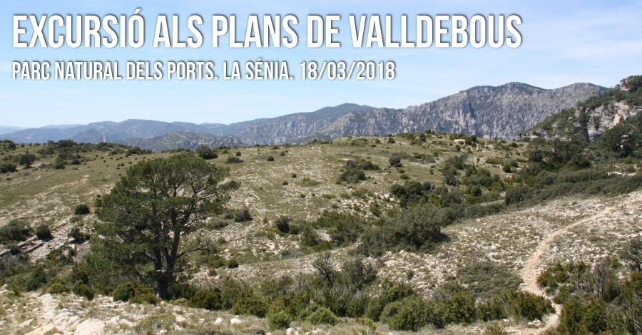 Excursió als Plans de Valldebous