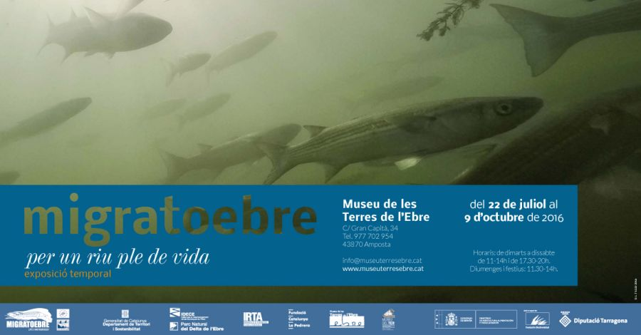 Exposició «MigratoEbre, Per un riu ple de vida»
