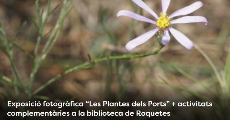"""Setmana de la Natura: Exposició fotogràfica """"Les Plantes dels Ports"""""""