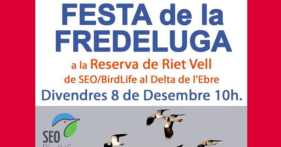 Festa de la Fredeluga
