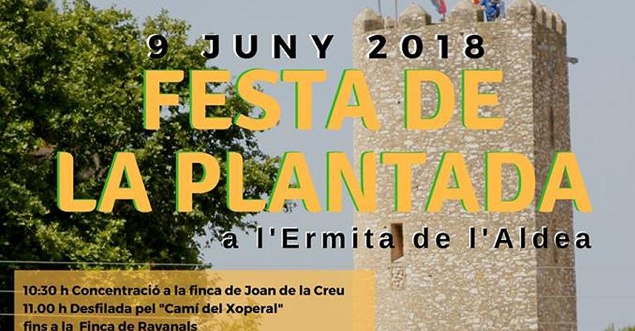 Festa de la Plantada a l'Ermita de l'Aldea