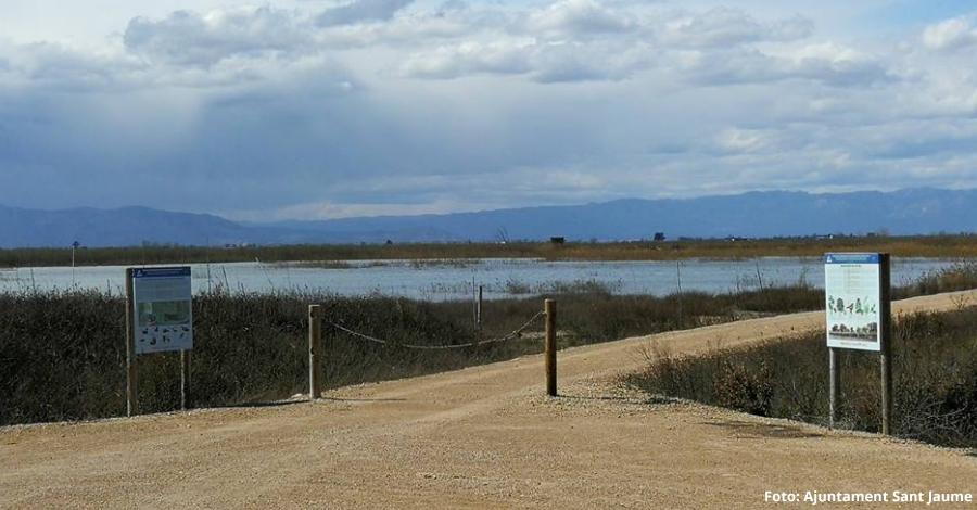 La finca del Violí torna a ser una zona humida