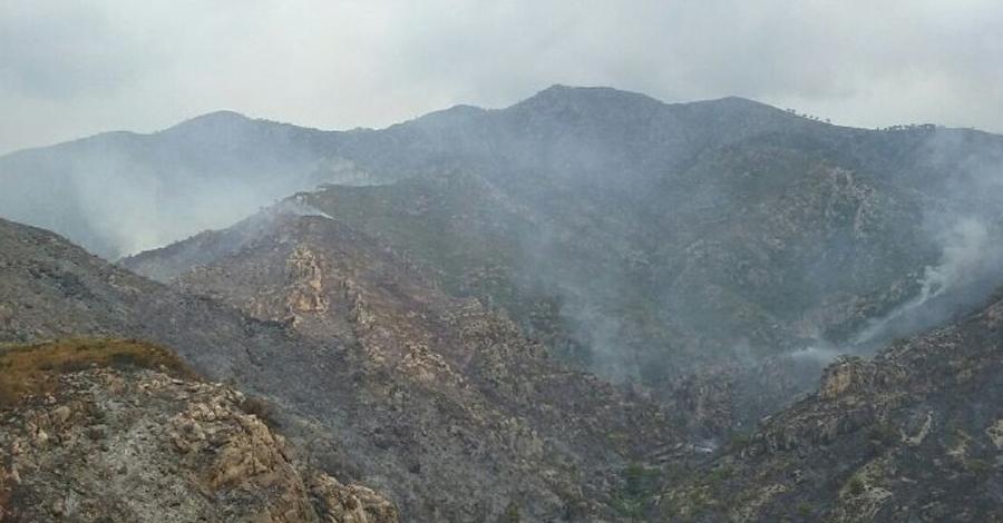 L´incendi de Tivenys queda estabilitzat amb 107 hectàrees cremades