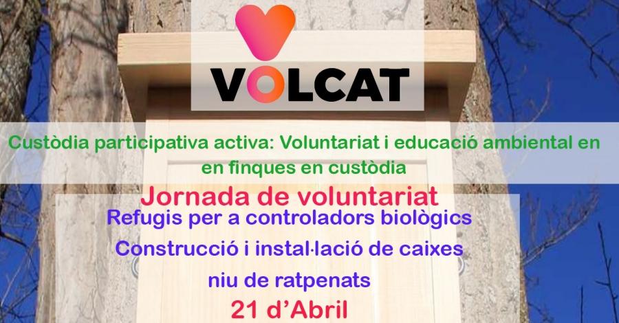 Jornada de voluntariat ambiental : Construcció i instal·lació de caixes niu de ratpenats