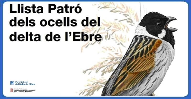 Es presenta la segona edició de la Llista Patró dels ocells del Delta de l'Ebre