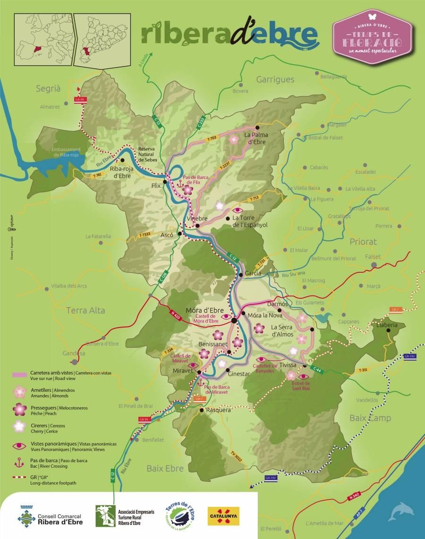 Circuito La Ribera : El consell comarcal aposta per la floració a ribera d