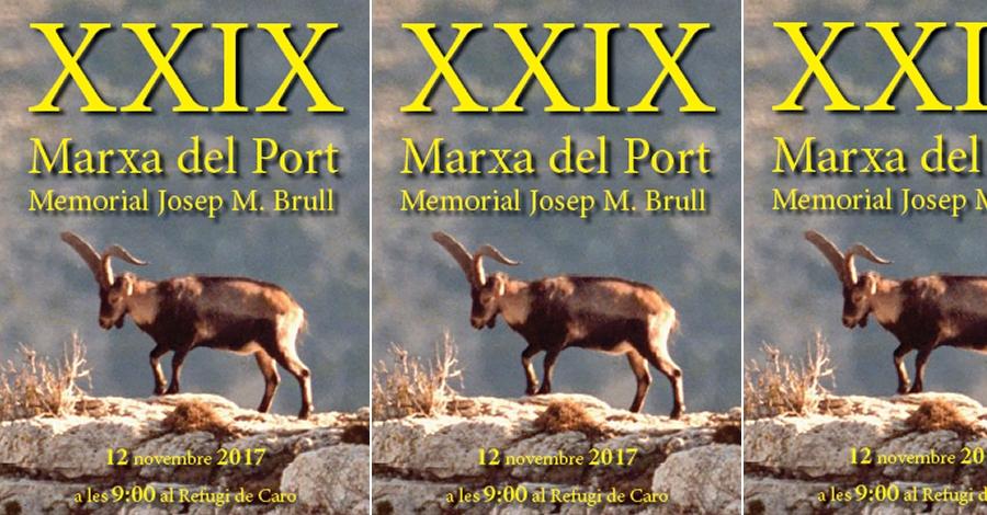 XXIX Marxa del Port. Memorial Josep M. Brull