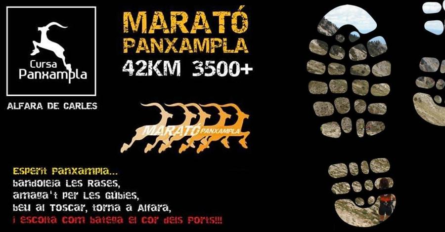 8a Marató de Panxampla
