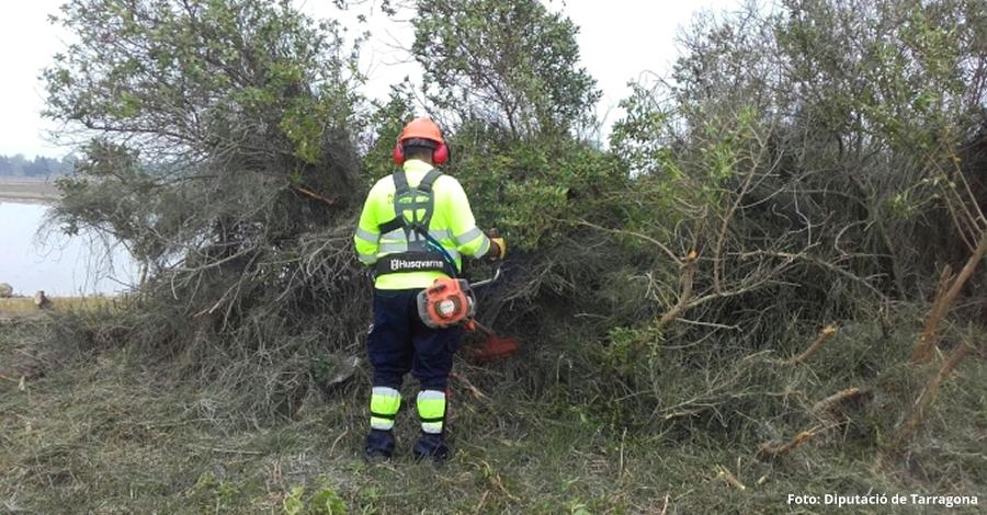 Millora d'entorns naturals a diversos municipis del Montsià