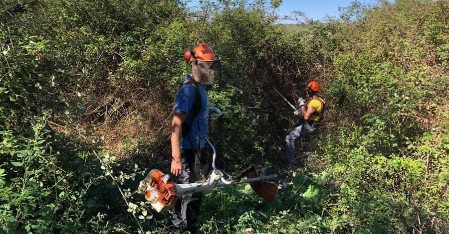 Campanya de neteja de camins i senders del GR92 al Montsià | EbreActiu.cat, revista digital per a la gent activa | Terres de l