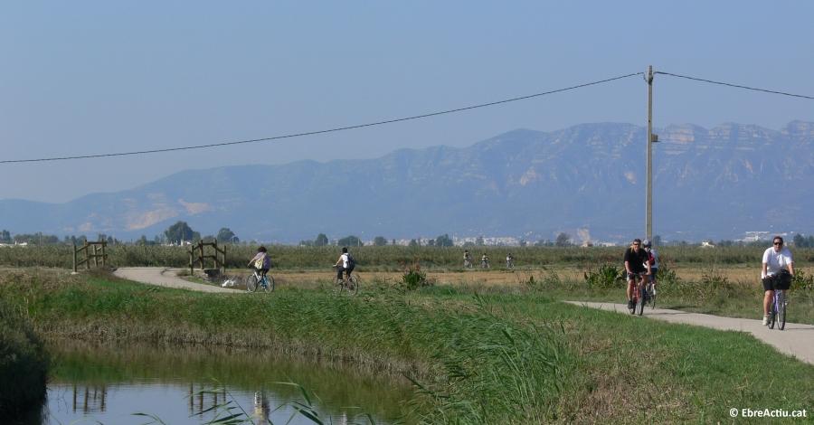 Sortida en bicicleta pel Delta per celebrar el Dia Europeu dels Parcs
