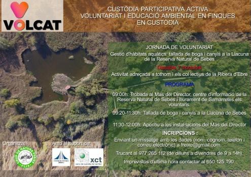 Nova jornada de voluntariat a la Reserva Natural de Sebes (Flix) dins del projecte VOLCAT | EbreActiu.cat, revista digital per a la gent activa