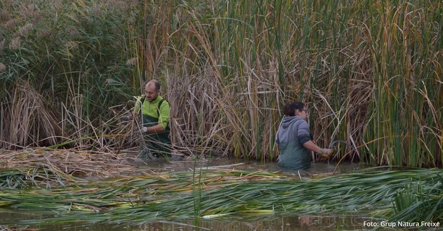 Nova jornada de voluntariat a la Reserva Natural de Sebes (Flix) dins del projecte VOLCAT
