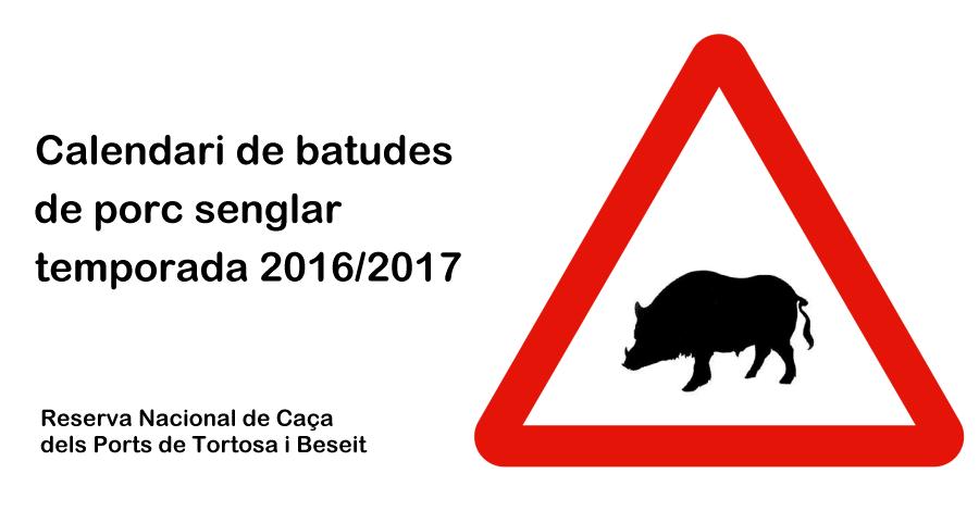 Publicat el calendari de batudes de porc senglar per a la temporada 2016/17