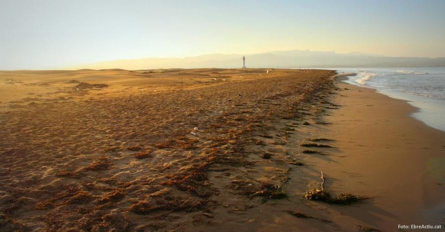 Disset platges de les Terres de l'Ebre guardonades amb el distintiu «Platges verges»
