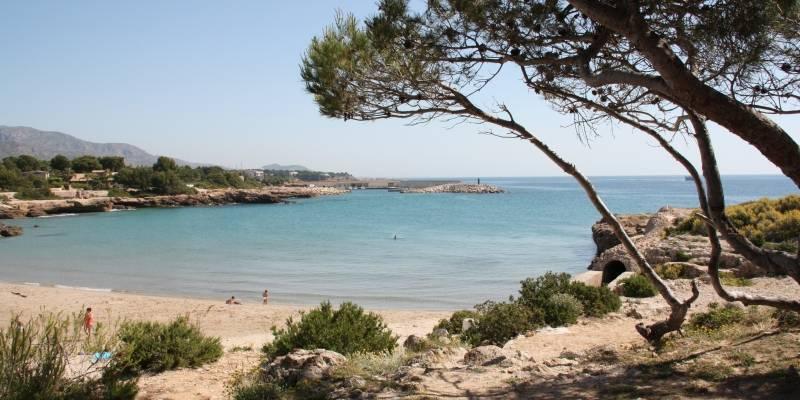 El 89% de les zones de bany de Catalunya reben una qual·lificació excel·lent