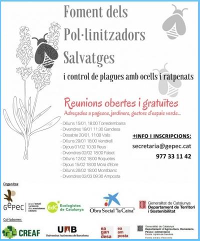 Campanya per fomentar l'ús dels insectes pol·linitzadors  | EbreActiu.cat, revista digital per a la gent activa