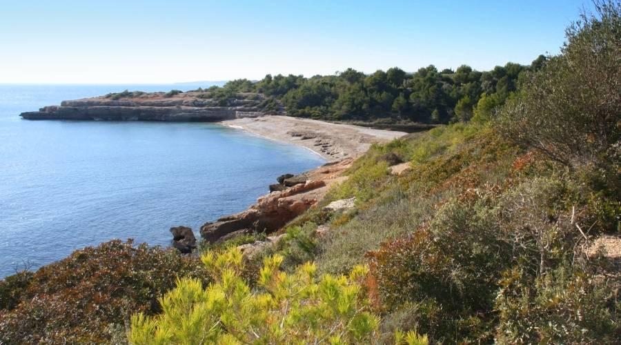 La informació actualitzada sobre l'estat de les platges, disponible a l'aplicació PlatgesCat | EbreActiu.cat, revista digital per a la gent activa | Terres de l