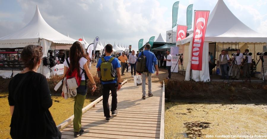 La 4a edició del Delta Birding Festival rep un 15% més de visitants